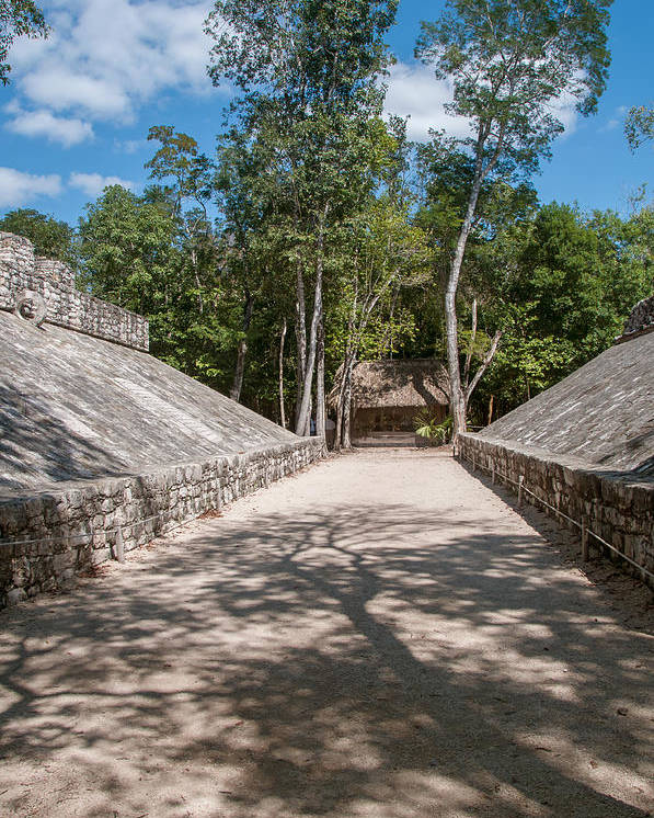 Mexico Quintana Roo Poster featuring the digital art Ball Court At The Coba Ruins by Carol Ailles