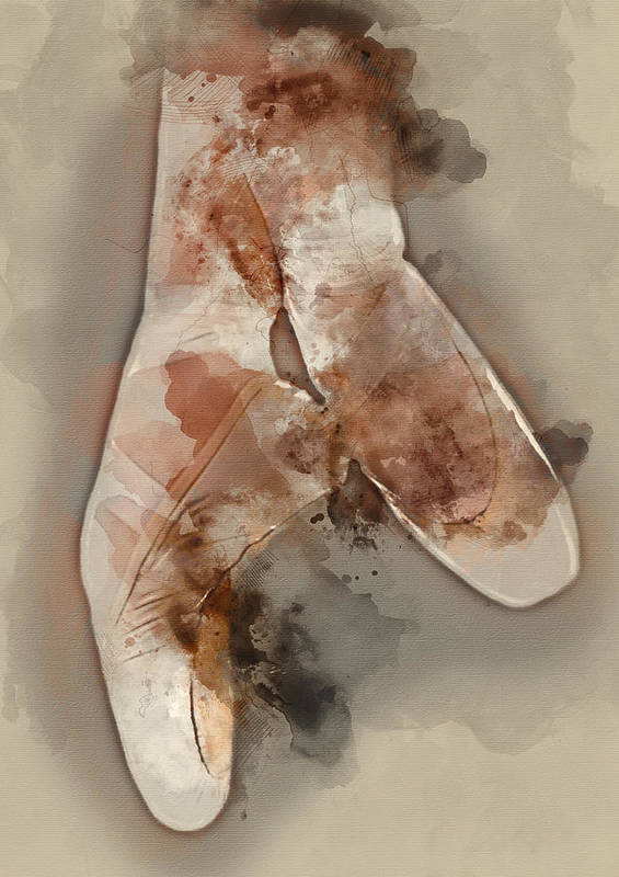 Ballerina Poster featuring the painting Ballerina Shoes - By Diana Van by Diana Van