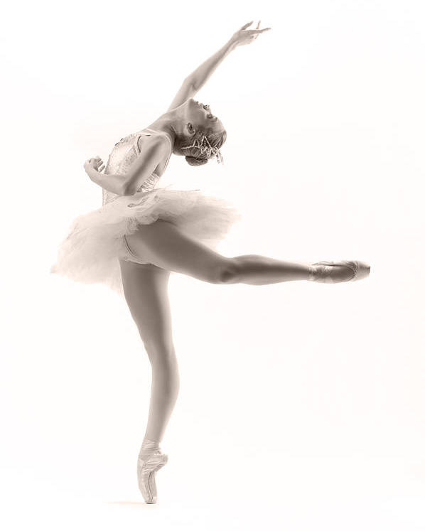 Ballerina Poster featuring the photograph Ballerina by Steve Williams