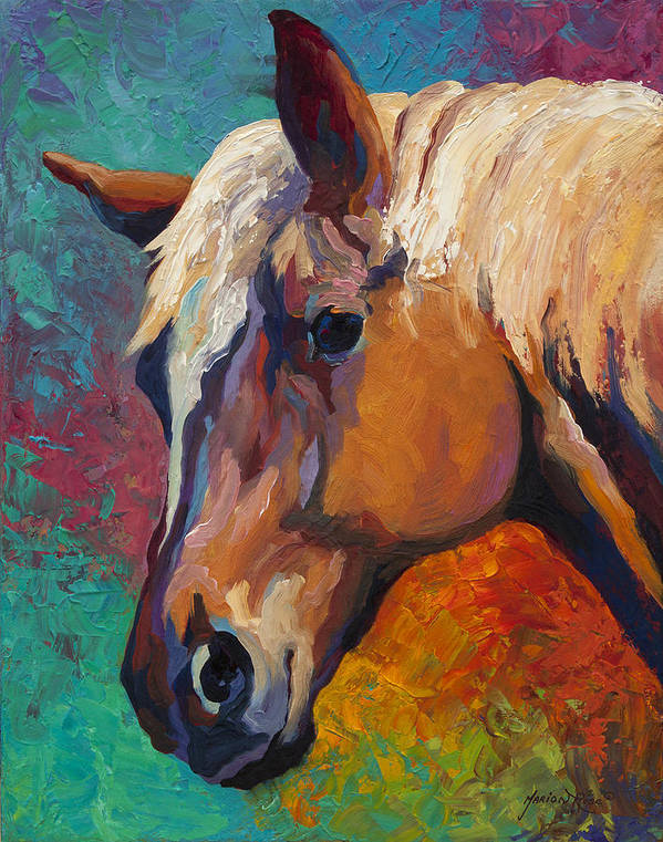Horses Poster featuring the painting Bandit by Marion Rose
