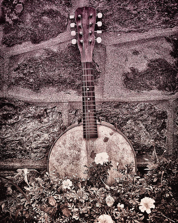 Banjo Poster featuring the photograph Banjo Mandolin On Garden Wall by Bill Cannon