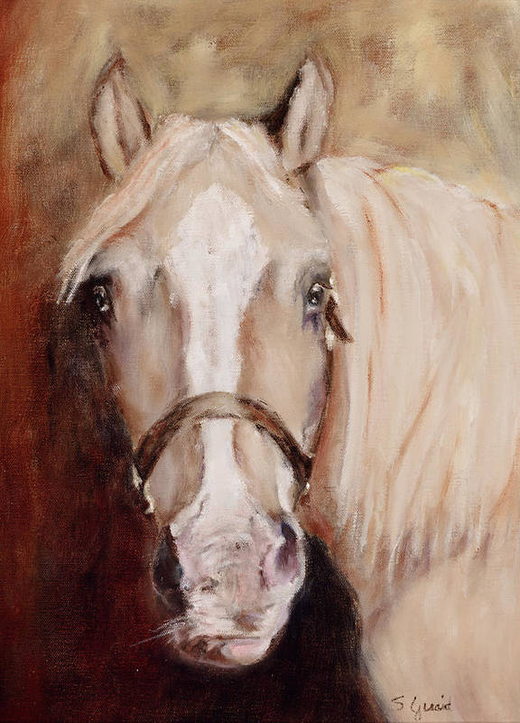 Horse Poster featuring the painting Banjo by Shirley Quaid