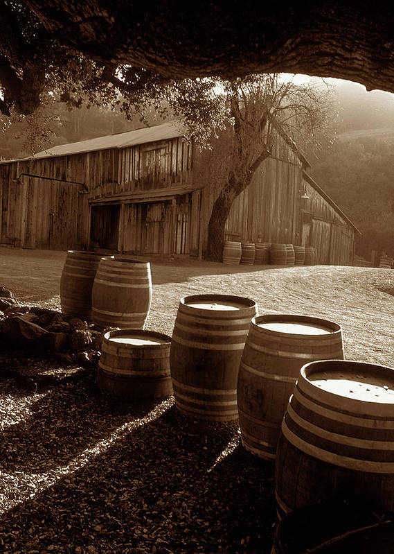 Old Barns Poster featuring the photograph Barn And Wine Barrels 2 by Kathy Yates