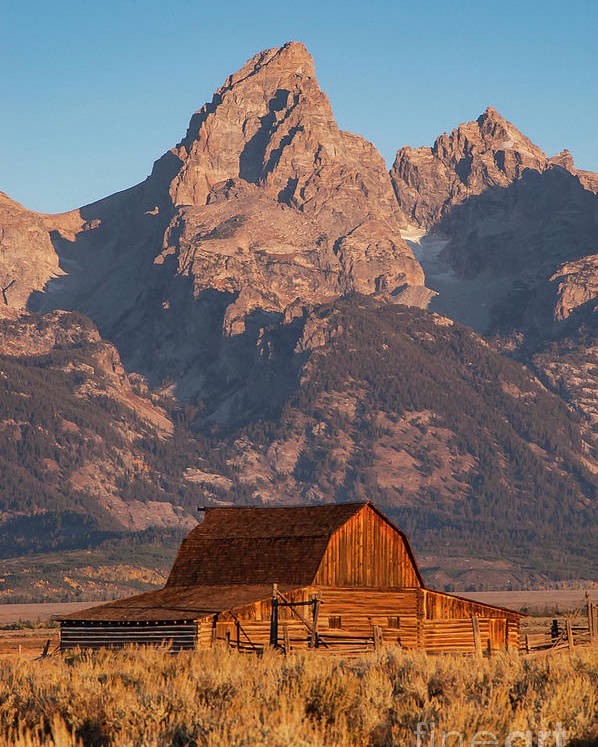 Jackson Hole Poster featuring the photograph Barn In The Tetons One by Bob Phillips