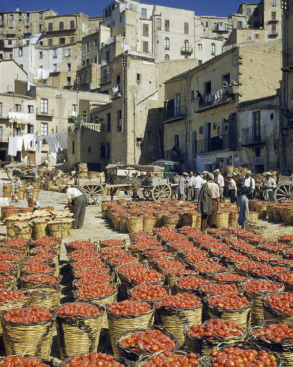 Outdoors Poster featuring the photograph Baskets Filled With Tomatoes Stand by Luis Marden