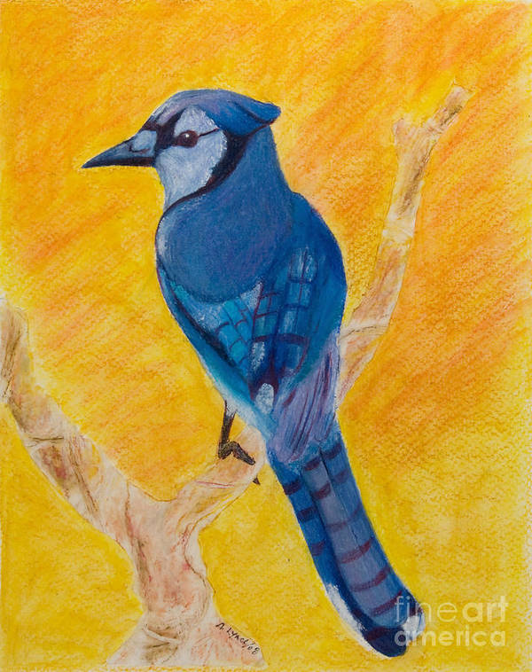 Blue Jay Poster featuring the painting Basking In The Sunset - My Branch by Alison Lynch