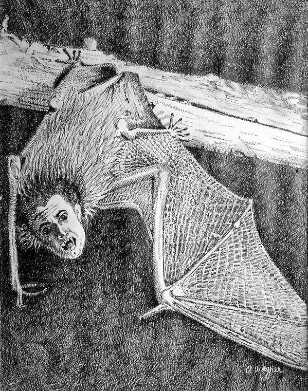 Bat Poster featuring the drawing Bat Man by Arline Wagner