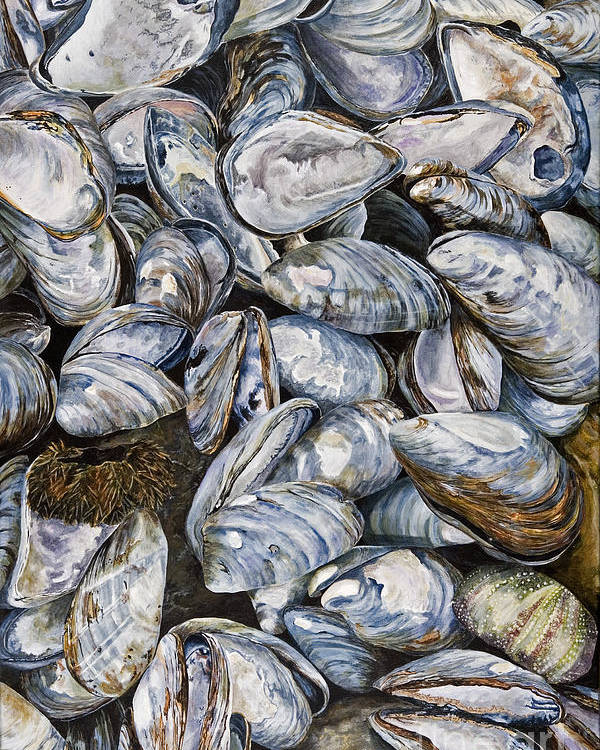 Mussel Shells Poster featuring the painting Bay Of Fundy Blues by Helen Shideler