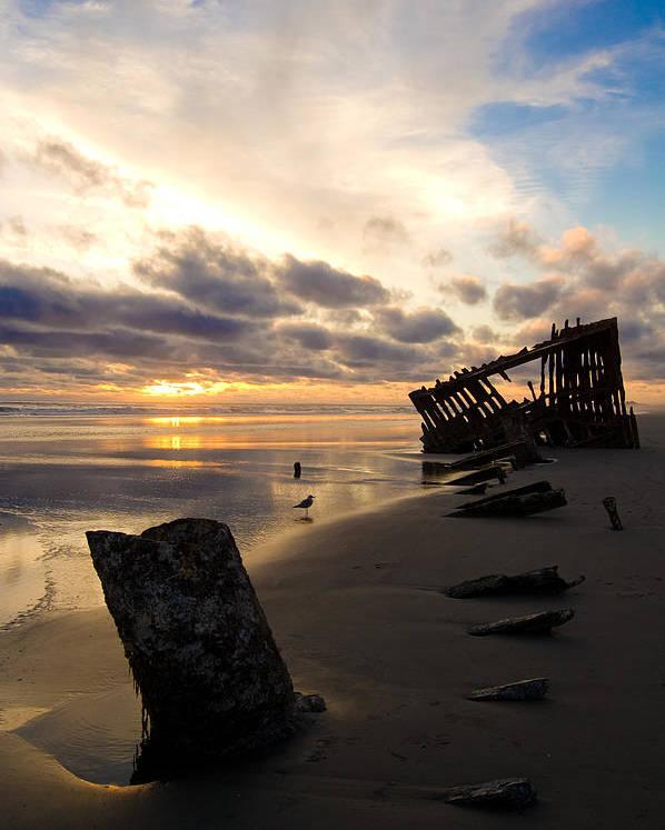 Landscape Poster featuring the photograph Beach Bones by Jennifer Owen