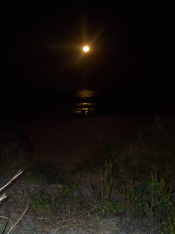 Moon Poster featuring the photograph Beach Full Moon by Patricia Taylor