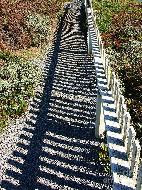 Half Moon Bay Poster featuring the photograph Beach Path by Carol Groenen