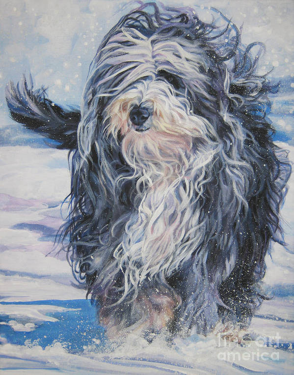 Bearded Collie Poster featuring the painting Bearded Collie In Snow by Lee Ann Shepard