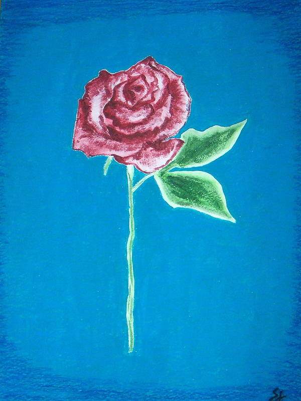 Rose Poster featuring the painting Beautiful Rose On Blue Background by Sanchia Fernandes