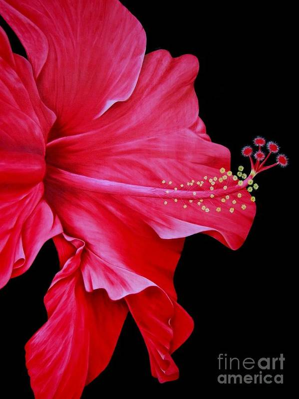 Red Flowers Poster featuring the painting Big Red by Mary Deal