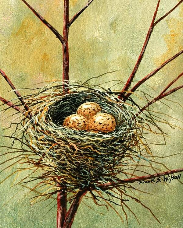 Still Life Poster featuring the painting Bird Nest by Frank Wilson