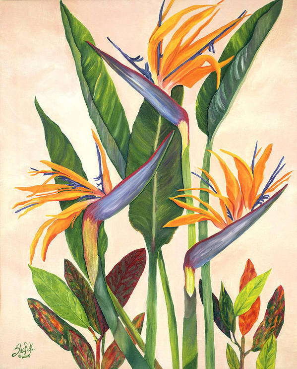 Floral Poster featuring the painting Bird Of Paradise by SheRok Williams