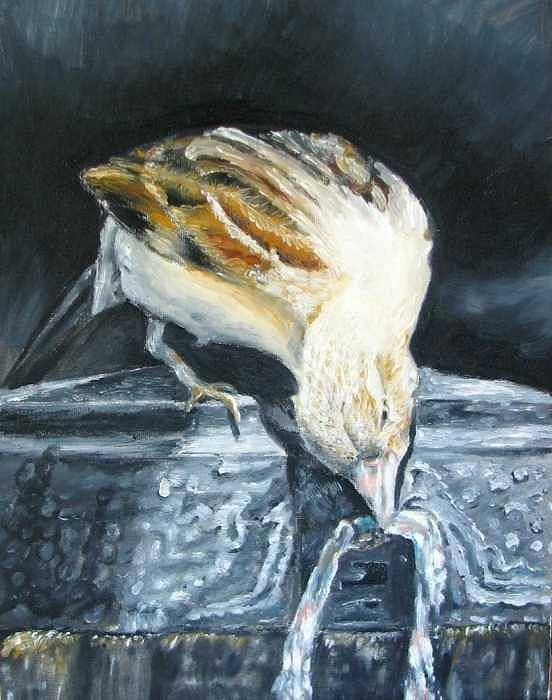 Oil Painting On Canvas Poster featuring the painting Bird Original Oil Painting by Natalja Picugina