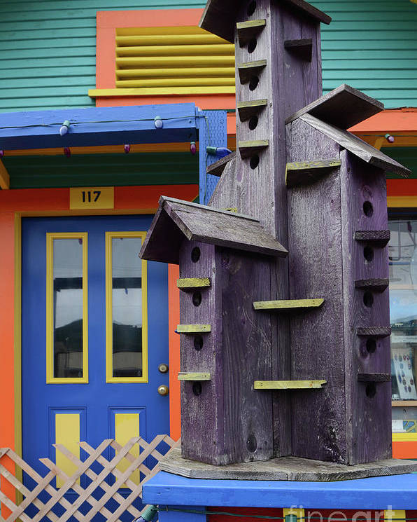 Birdhouse Poster featuring the photograph Birdhouses For Colorful Birds 2 by Bob Christopher