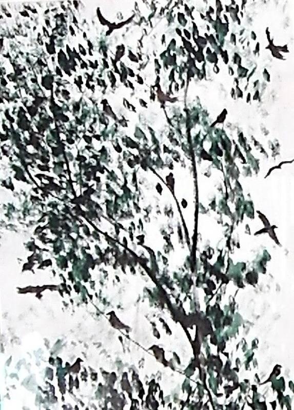 Birds Poster featuring the painting Birds At Sundown I by Caroline Urbania Naeem
