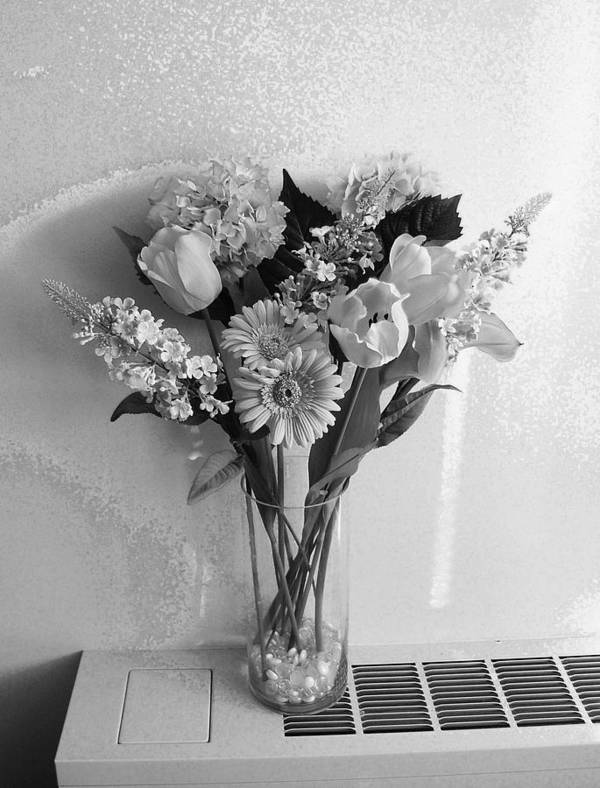 Modern Digital Art Poster featuring the photograph Black And White Flowers by Monica Smith
