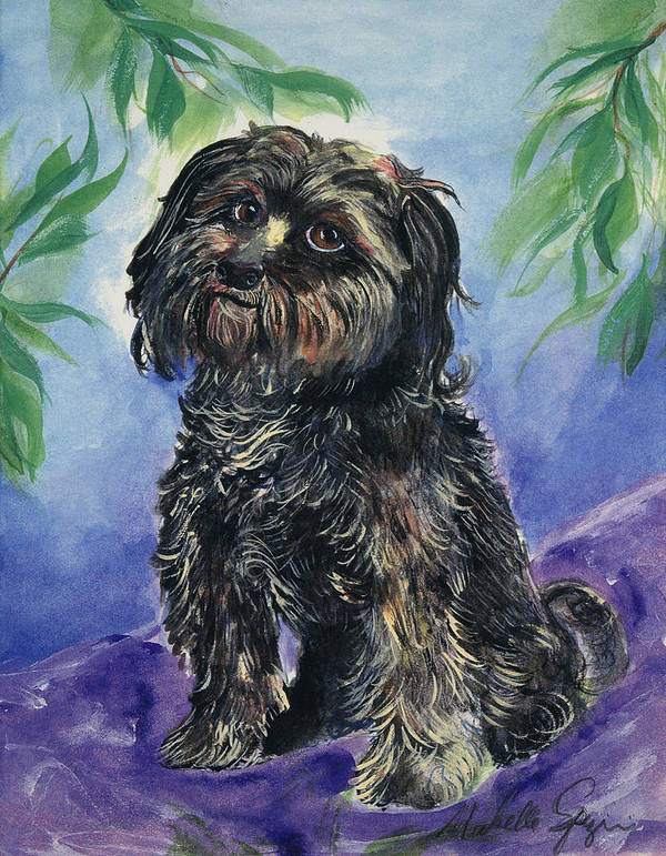 Pet Portraits Poster featuring the painting Black Dog by Michelle Spiziri