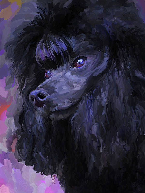 Black Poster featuring the painting Black Poodle by Jai Johnson