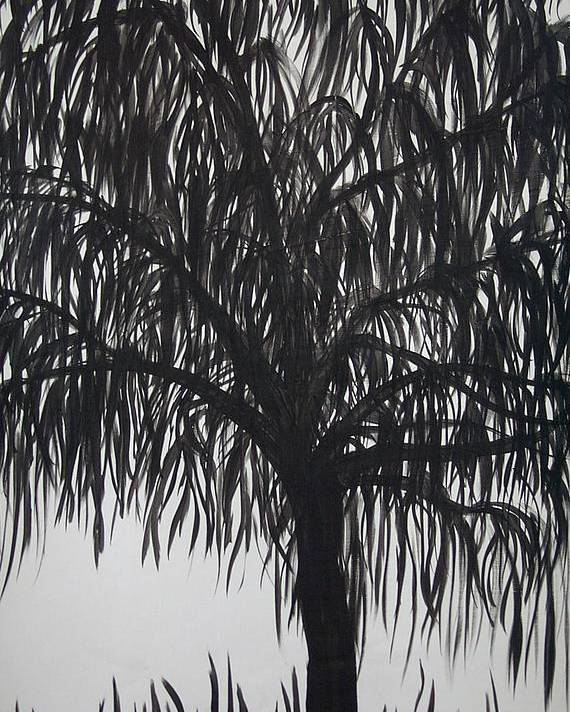 Willow Tree Landscape Black White Poster featuring the painting Black Willow by Sally Van Driest