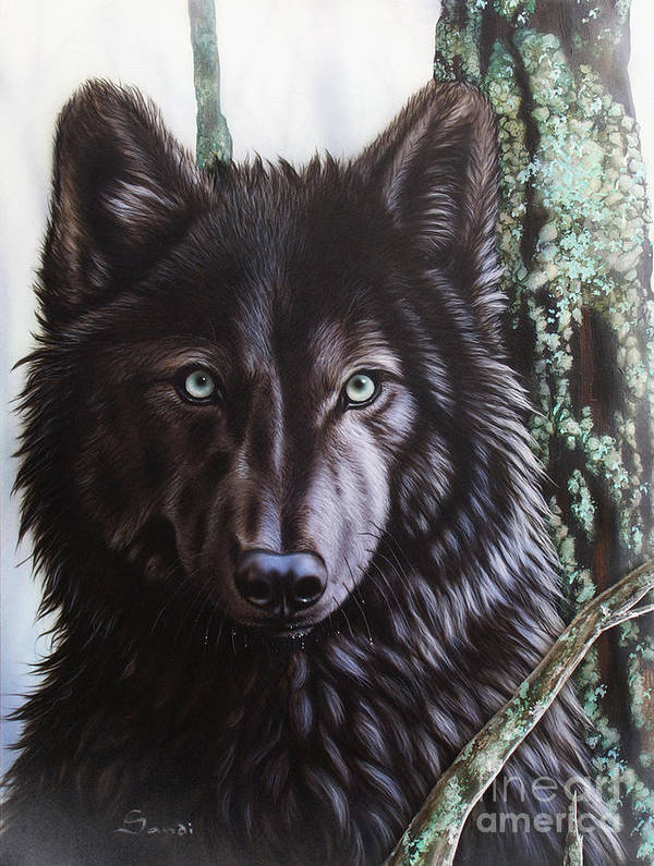 Wolves Poster featuring the painting Black Wolf by Sandi Baker