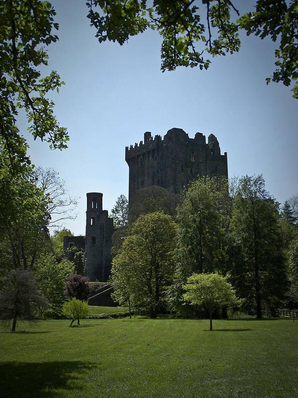 Irish Poster featuring the photograph Blarney Castle Ireland by Teresa Mucha