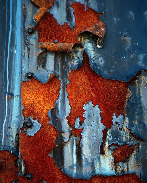 Rusty Pieces Poster featuring the photograph Blue And Rust by Karol Livote