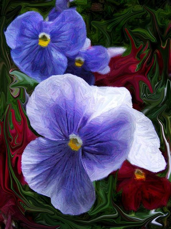Flower Poster featuring the photograph Blue Boys by Jim Darnall