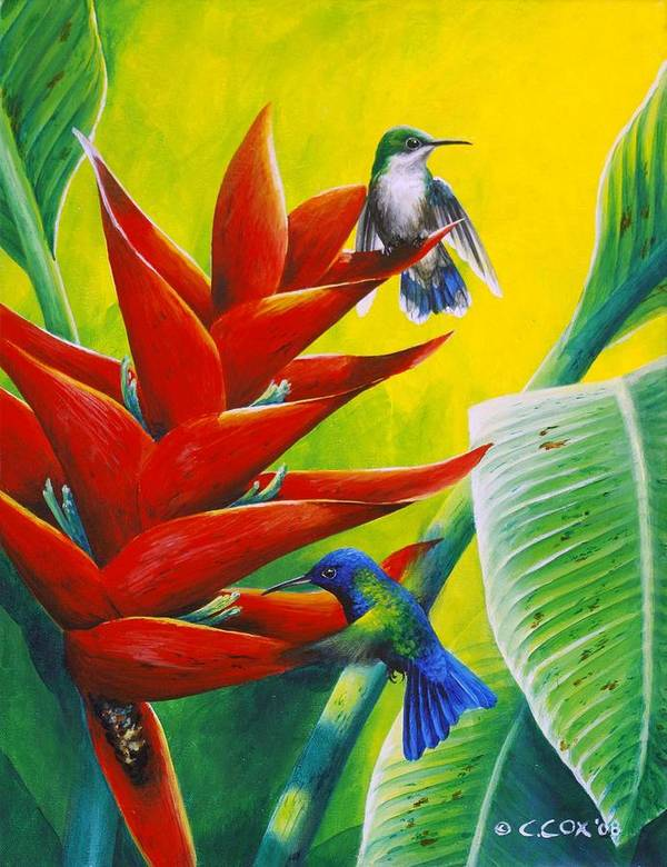 Chris Cox Poster featuring the painting Blue-headed Hummingbirds And Heliconia by Christopher Cox