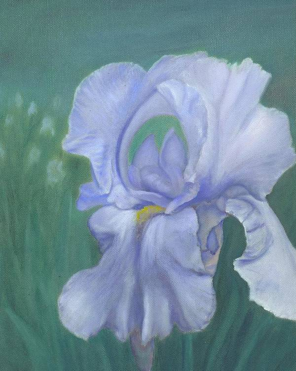 Flowers Poster featuring the painting Blue Iris by Laurel Ellis