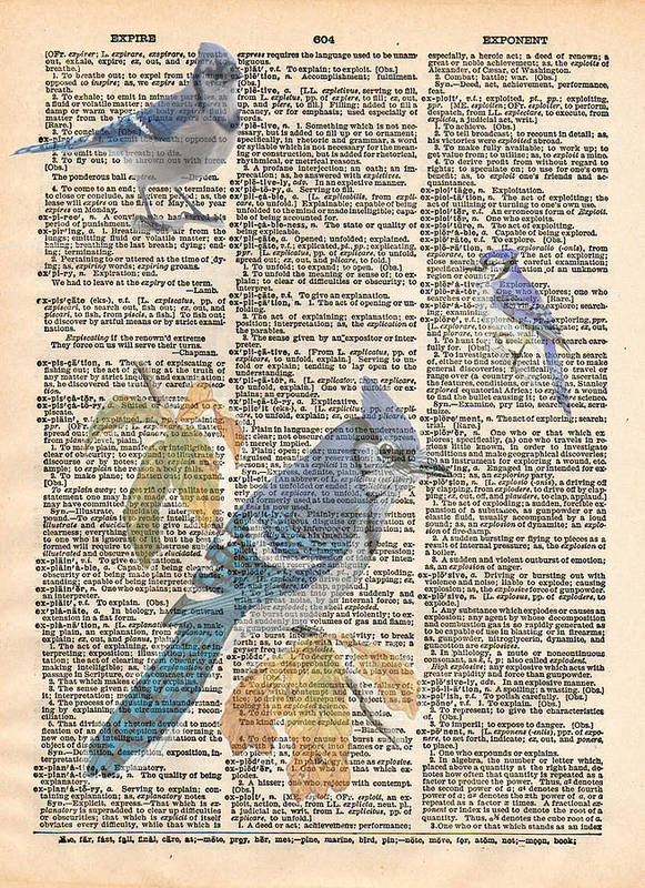 Bluejay Poster featuring the mixed media Blue Jay Expire by Marcus Jules