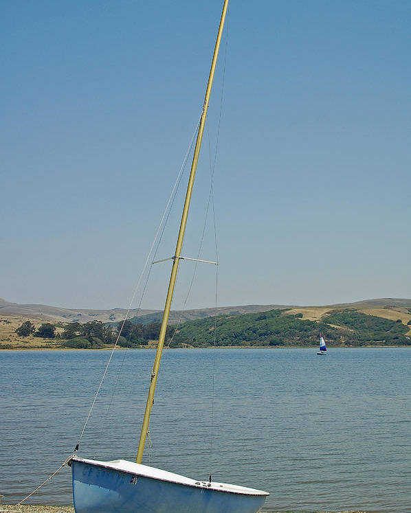 Blue Poster featuring the photograph Blue Sailboat by Suzanne Gaff