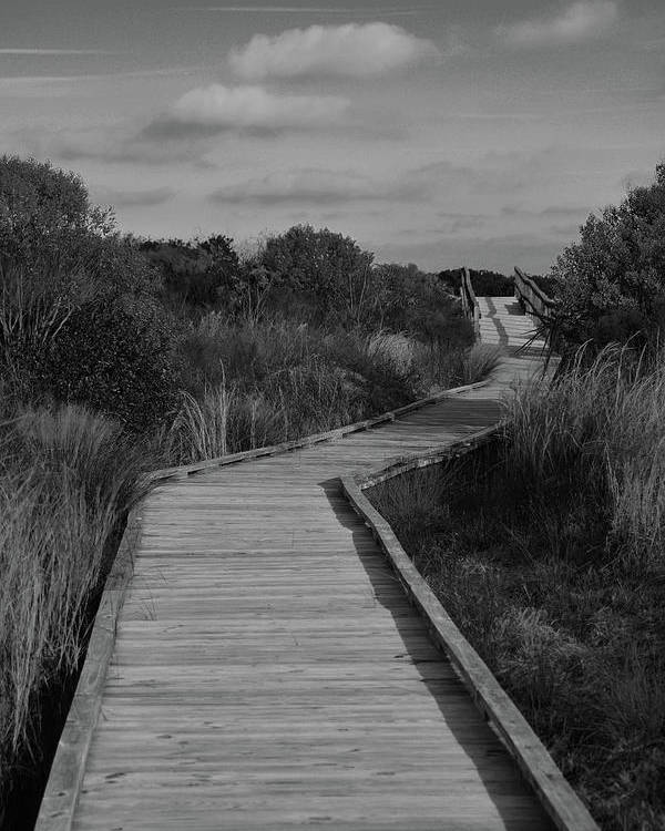 Boardwalk Poster featuring the photograph Boardwalk At Talbot Island by Spencer Studios