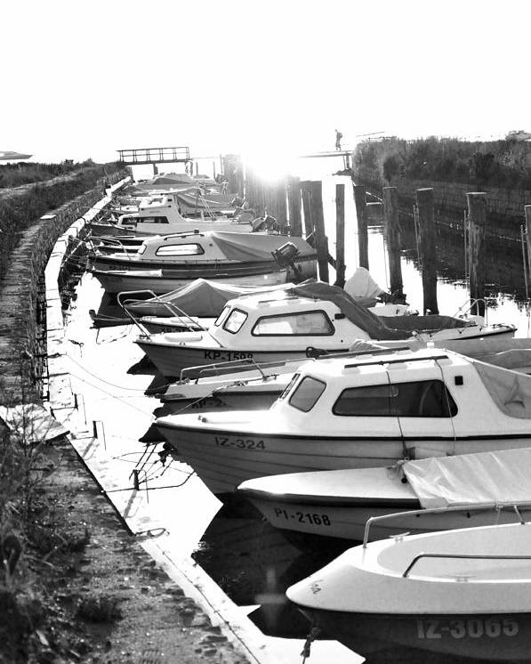Boats Poster featuring the photograph Boats by Damijana Cermelj