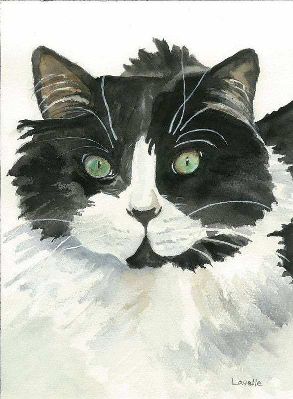 Animal Pictures Poster featuring the painting Bodhi by Kimberly Lavelle