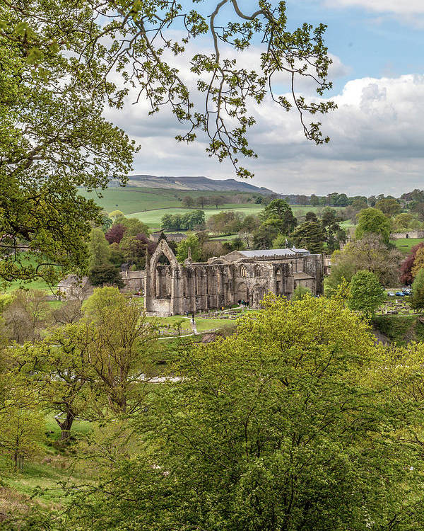 Valley Poster featuring the photograph Bolton Abbey In Spring by W Chris Fooshee
