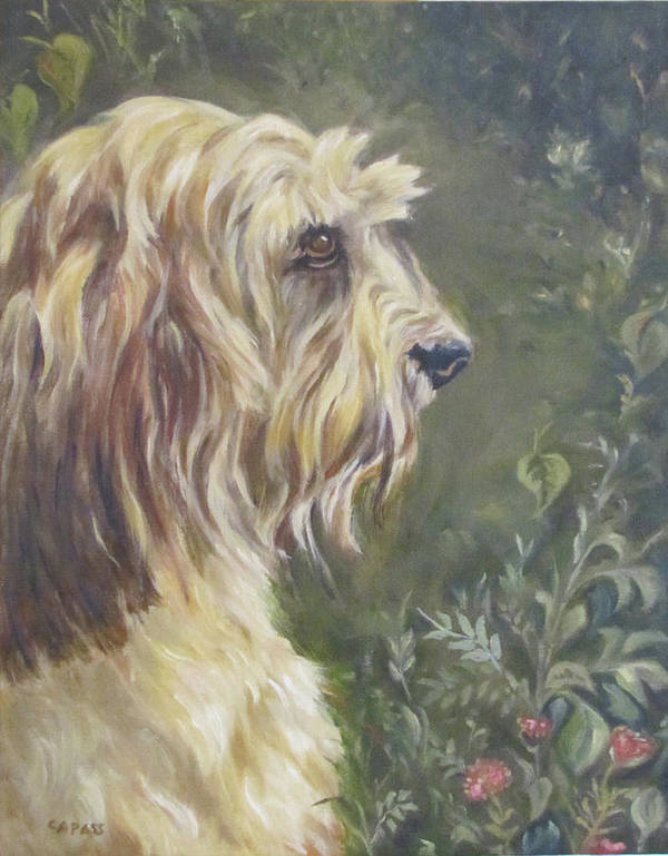 Companion Animals Poster featuring the painting Bosley's Garden Portrait by Cheryl Pass