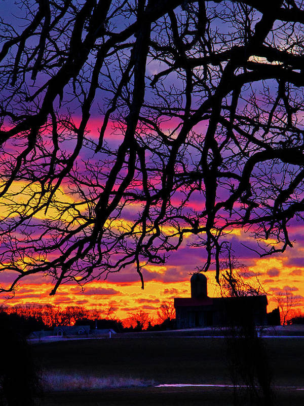 Horizons Poster featuring the photograph Branched Barn by Phil Koch
