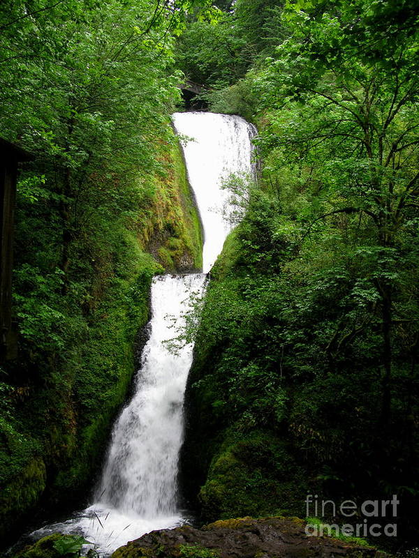 Waterfall Poster featuring the photograph Bridal Veil Falls by PJ Cloud