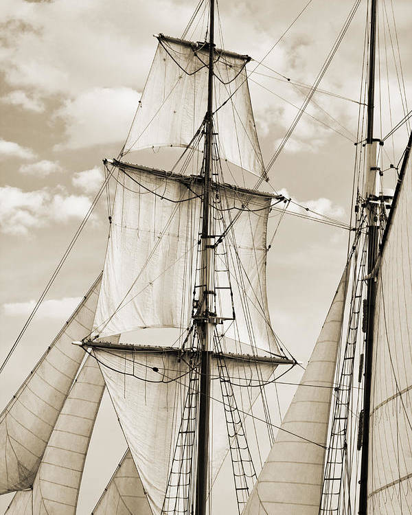 Brigantine Poster featuring the photograph Brigantine Tallship Fritha Sails And Rigging by Dustin K Ryan
