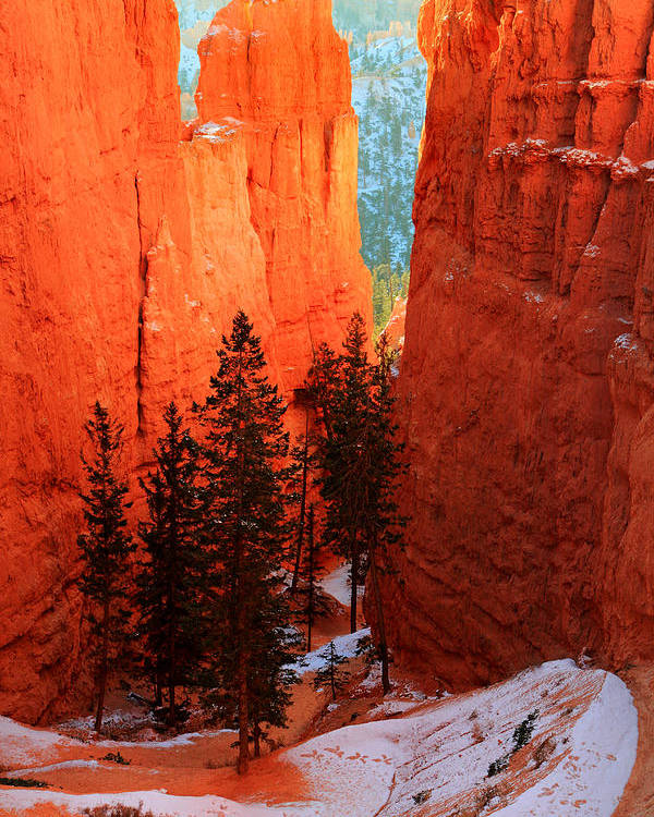 Bryce Poster featuring the photograph Bryce Canyon Sunrise Glow by Pierre Leclerc Photography