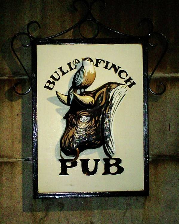 Bull Poster featuring the photograph Bull And Finch Pub by Pamela Smith