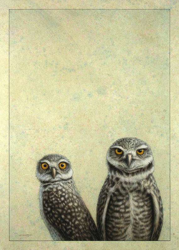 Owls Poster featuring the painting Burrowing Owls by James W Johnson