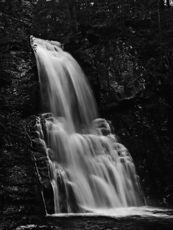 Water Falls Poster featuring the photograph Bushkill Falls by Louis Dallara