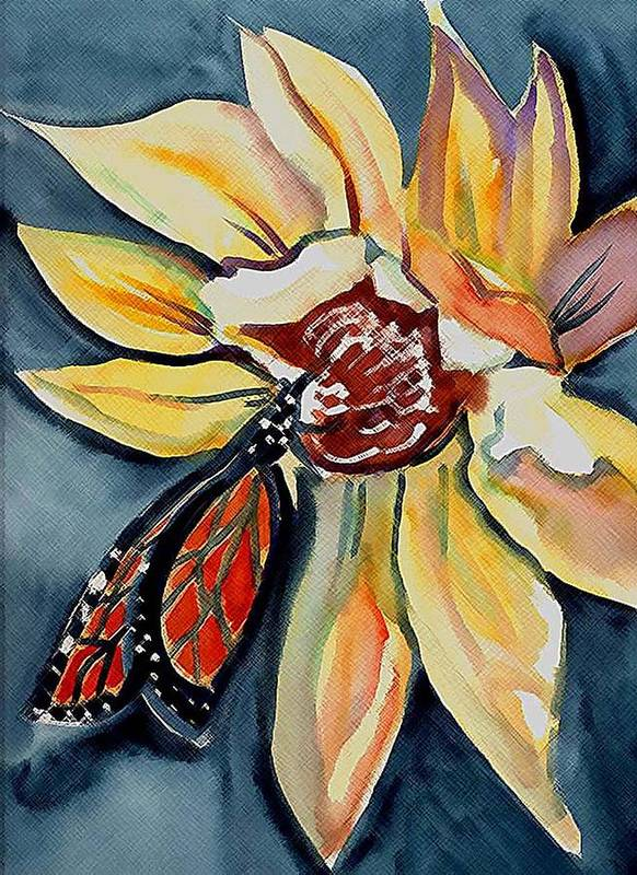 Butterfly Poster featuring the painting Butterfly -cross Hatch by Janet Doggett