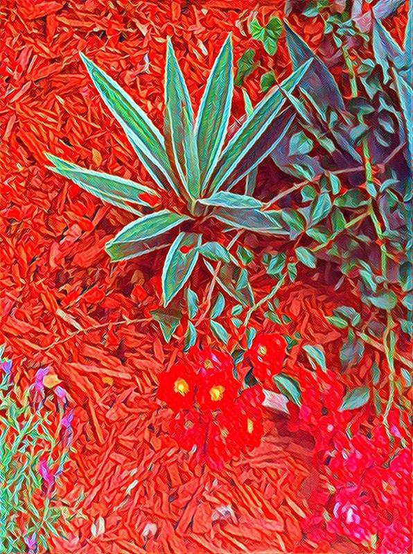 Red Hot Poster featuring the photograph Caliente by Cherylene Henderson
