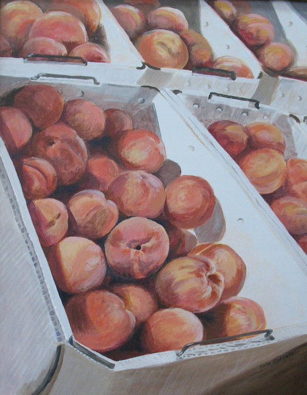 Peaches Poster featuring the painting California Peaches by Vera Rodgers